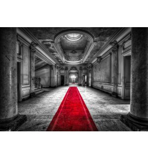 Wall mural vlies: Hallway at the castle - 416x254 cm