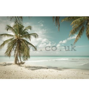 Wall mural: Palm trees over the sea - 184x254 cm