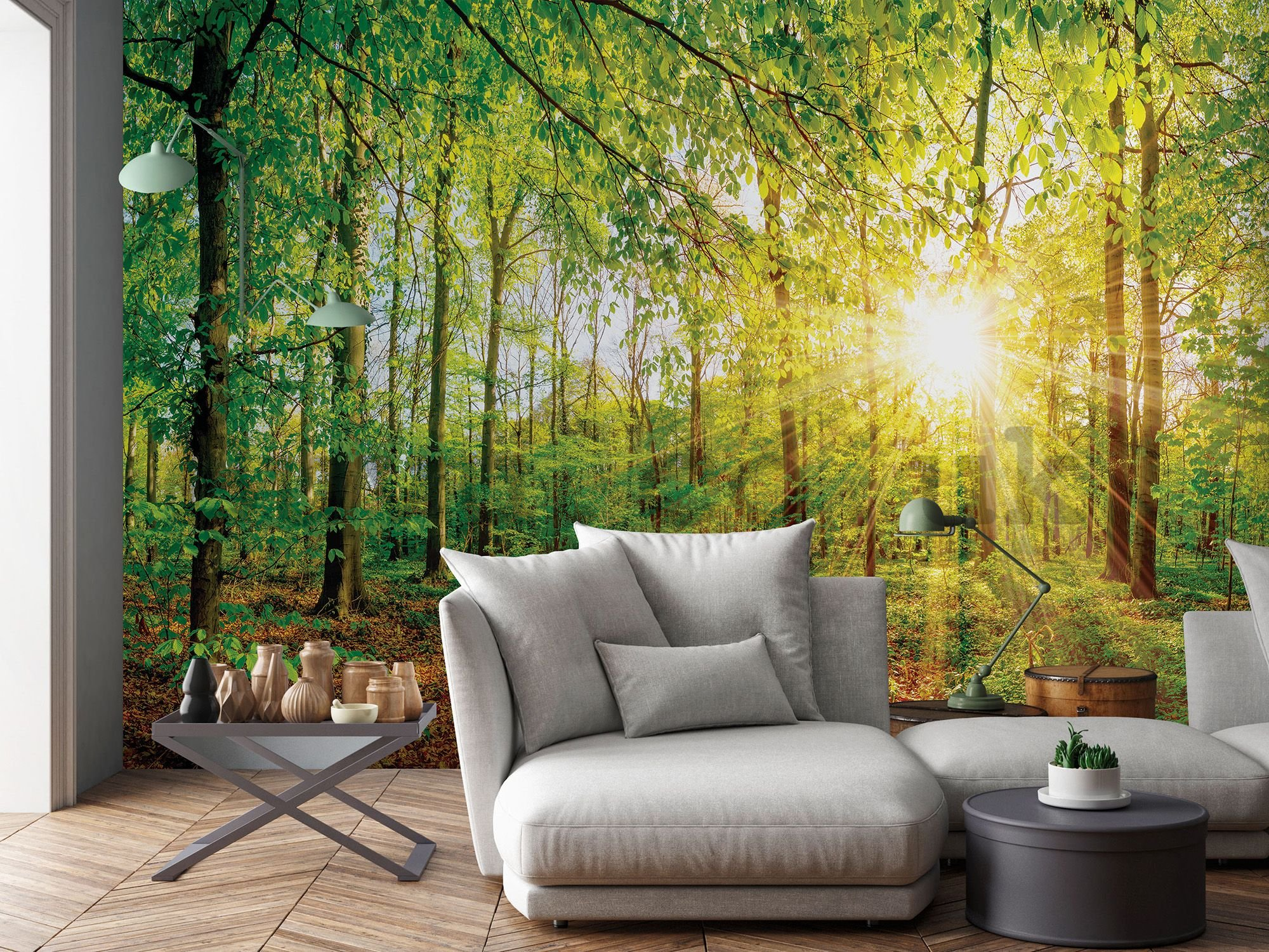 Wall mural: View of the forest - 184x254 cm