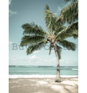 Wall mural: Palm tree by the sea - 184x254 cm