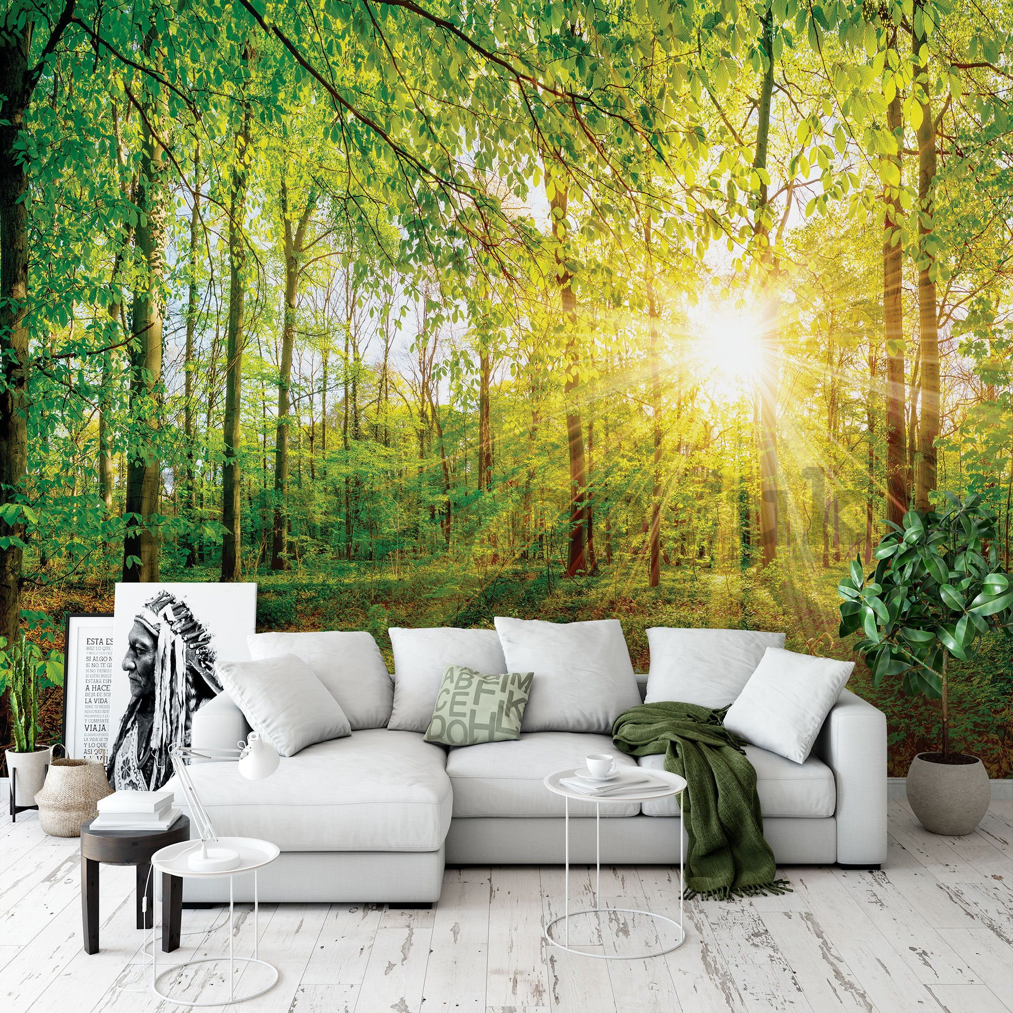 Wall mural: View of the forest - 104x152,5 cm