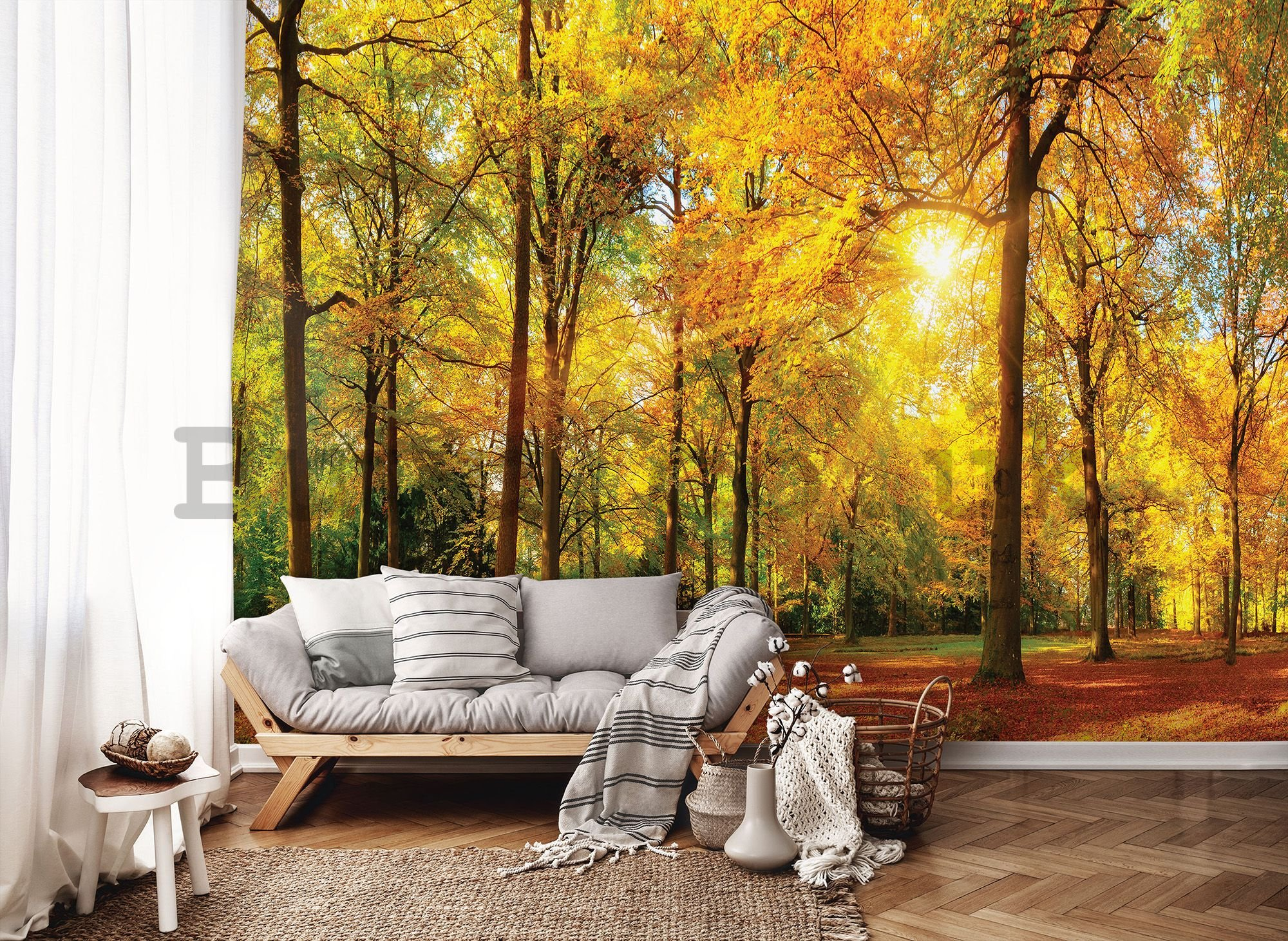 Wall mural vlies: Fallen leaves in the forest - 416x254 cm