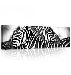 Painting on canvas: Zebra (1) - 145x45 cm