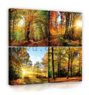 Painting on canvas: Forest - set 4pcs 25x25cm