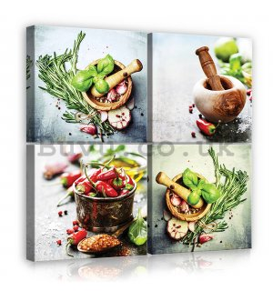Painting on canvas: Herbs and chili - set 4pcs 25x25cm