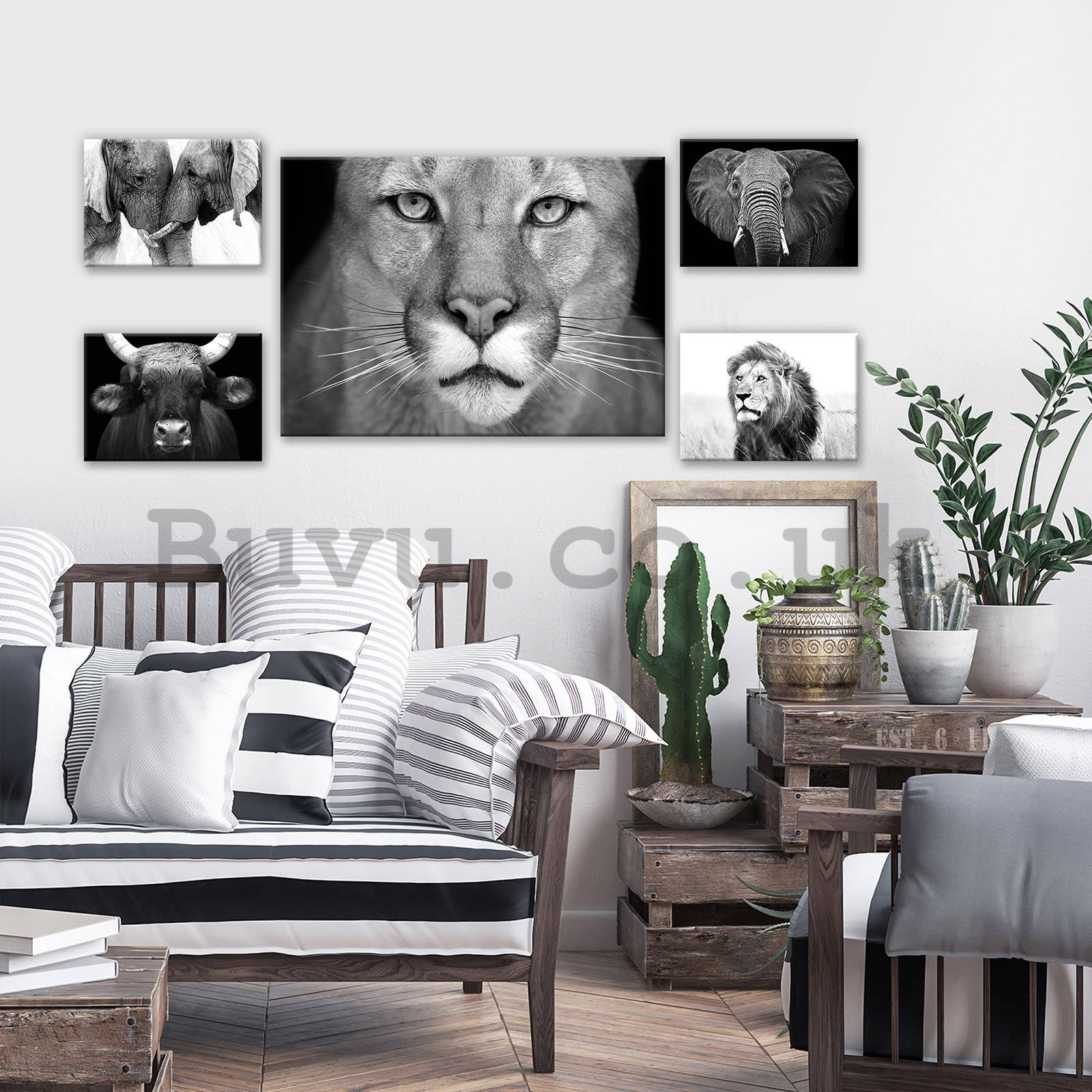 Painting on canvas: Black and white lion - set 1pc 70x50 cm and 4pc 32,4x22,8 cm