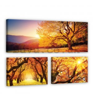 Painting on canvas: Autumn trees - set 1pc 80x30 cm and 2pc 37,5x24,8 cm