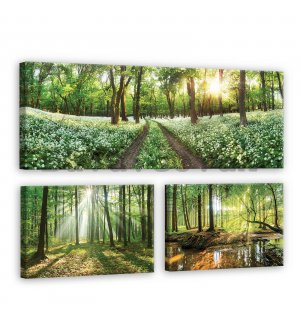 Painting on canvas: Journey through the forest - set 1pc 80x30 cm and 2pc 37,5x24,8 cm