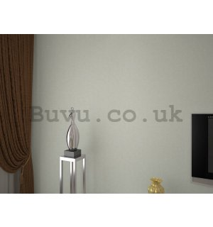 Vinyl wallpaper light gray (1)