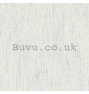 Vinyl wallpaper light gray textured
