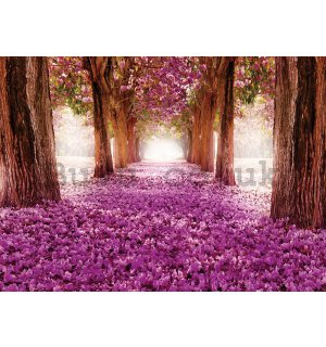 Wall mural: Blossoming Alley - 254x184cm