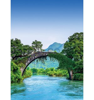 Wall mural: Bridge and river - 184x254cm