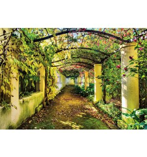 Wall mural: Blooming road - 368x254cm