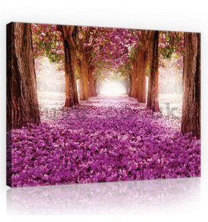Painting on canvas: Blossom alley (1) - 75x100 cm