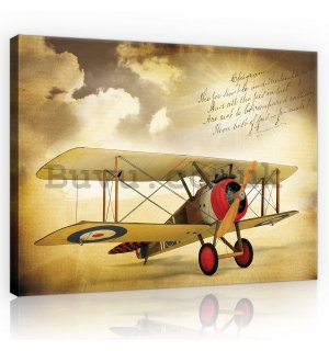 Painting on canvas: Biplane (Vintage) - 75x100 cm