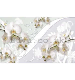 Wall Mural: White orchid (pattern) - 254x368 cm