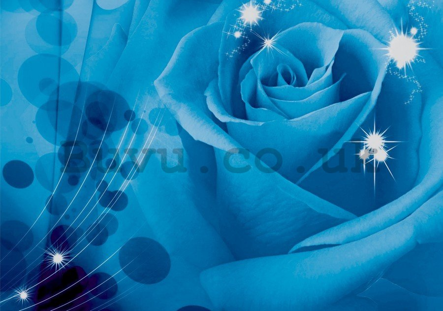 Painting on canvas: Blue Rose (1) - 75x100 cm