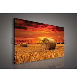 Painting on canvas: Straw bales on the Field - 75x100 cm