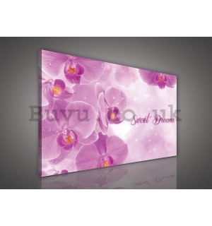 Painting on canvas: Orchids (Sweet dreams) - 75x100 cm