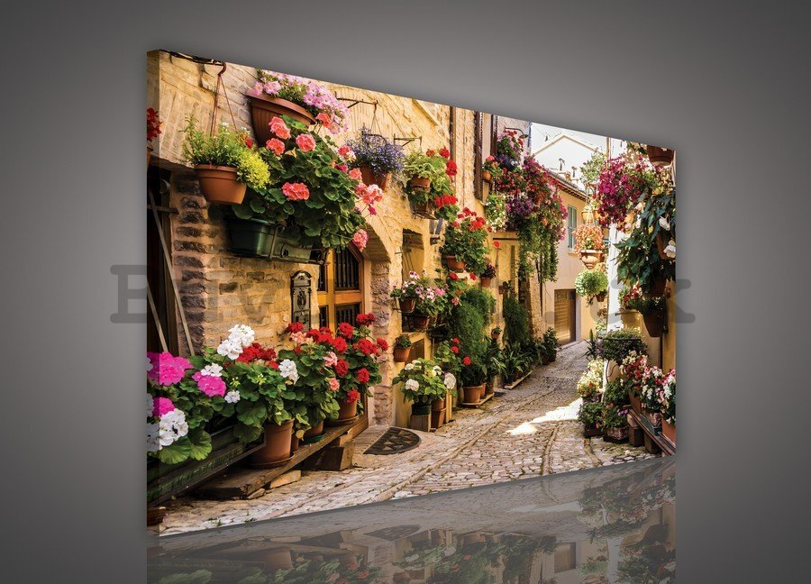 Painting on canvas: Floral Lane - 75x100 cm