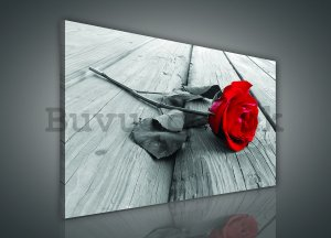 Painting on canvas: Red rose - 75x100 cm