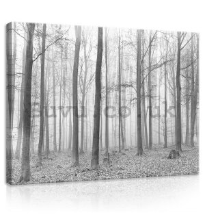 Painting on canvas: Fog in the forest (2) - 75x100 cm