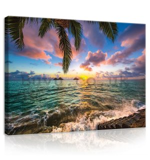 Painting on canvas: Tropical Paradise (3) - 75x100 cm
