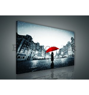 Painting on canvas: In the rain - 75x100 cm