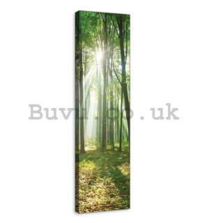 Painting on canvas: Sun in the Forest (3) - 145x45 cm