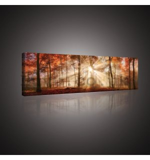 Painting on canvas: Summer dawn - 145x45 cm