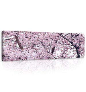 Painting on canvas: Flowering cherry (1) - 145x45 cm