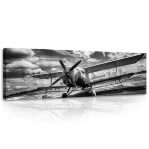 Painting on canvas: Biplane (black and white) - 145x45 cm