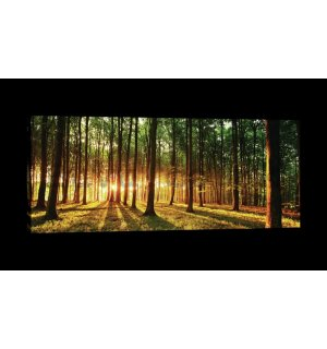 Painting on canvas: Sunset in the Forest - 145x45 cm