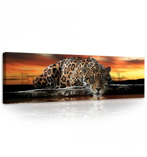 Painting on canvas: Jaguar - 145x45 cm