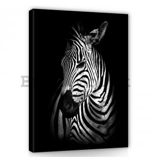 Painting on canvas: Zebra (2) - 100x75 cm