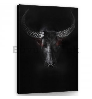 Painting on canvas: Black Bull - 100x75 cm