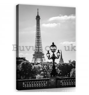 Painting on canvas: Black and White Eiffel Tower - 100x75 cm