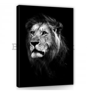 Painting on canvas: The Lion (5) - 100x75 cm