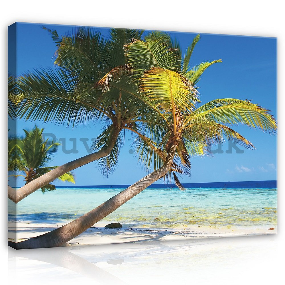 Painting on canvas: Beach with palm - 75x100 cm