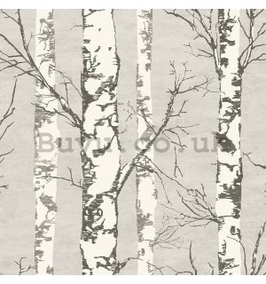 Vinyl wallpaper gray birch