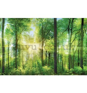 Painting on canvas: Green Forest (2) - 116x76 cm
