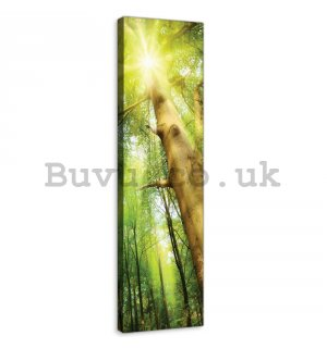 Painting on canvas: Forest sun (1) - 145x45 cm