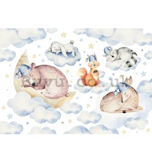 Wall mural vlies: Sleeping animals - 368x254 cm