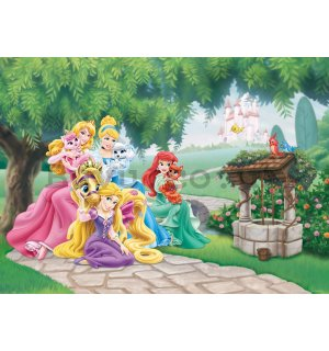 Wall mural vlies: Disney princess - 160x110 cm