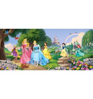 Wall mural vlies: Disney princess (panorama)  - 202x90 cm