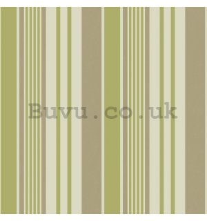 Vinyl wallpaper vertical stripes beige green