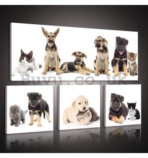 Painting on canvas: Dogs (1) - set 1pc 80x30 cm and 3pc 25,8x24,8 cm