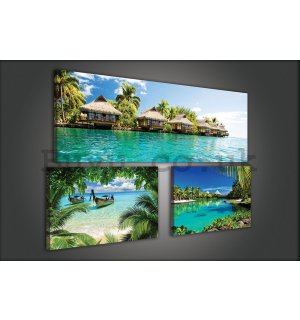 Painting on canvas: Tropical paradise - set 1pc 80x30 cm and 2pc 37,5x24,8 cm