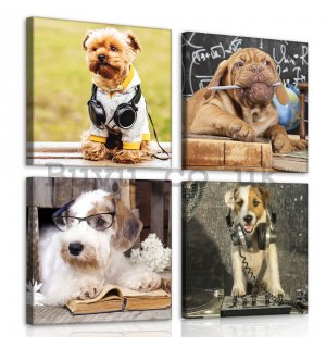 Painting on canvas: Dogs (2) - set 4pcs 25x25cm