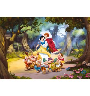 Wall Mural: Snow White and the Seven Dwarfs - 360x254 cm